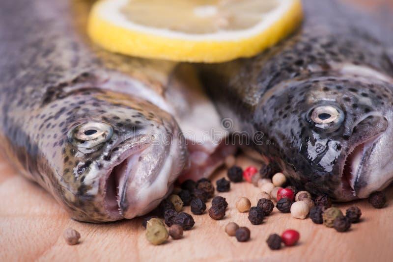 Download Truta Na Placa De Madeira Sobre O Branco Foto de Stock - Imagem de cabeça, peixes: 29845946
