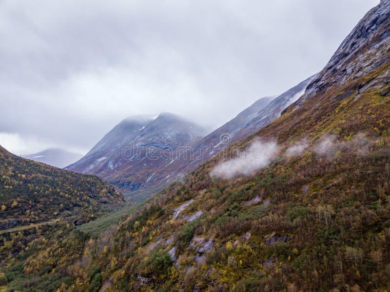 Truteń fotografia lasy w górach i Rzeczny Hjelledøla w Folva, Norwegia z chmurami Zakrywa góry obraz royalty free