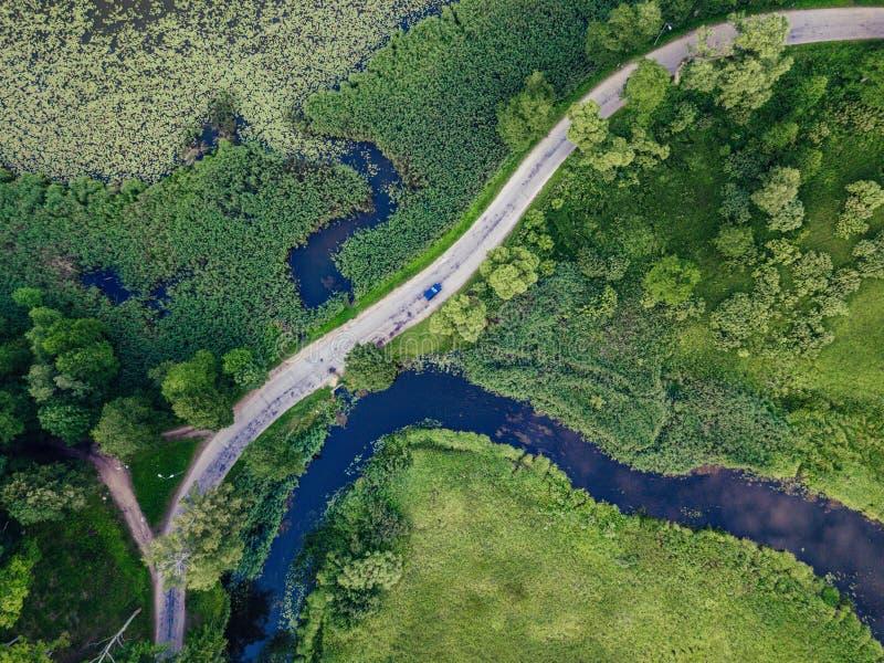Truteń fotografia Samochodowy jeżdżenie na drodze rzeką pod drzewami, wierzchołka puszka widok w Wczesnej wiośnie na słonecznym d zdjęcia stock