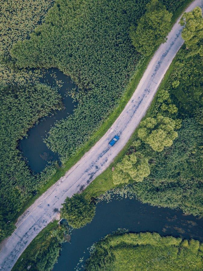 Truteń fotografia Samochodowy jeżdżenie na drodze rzeką pod drzewami, wierzchołka puszka widok w Wczesnej wiośnie na słonecznym d obraz royalty free