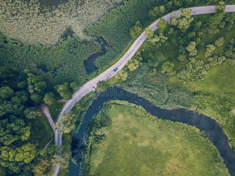 Truteń fotografia Samochodowy jeżdżenie na drodze rzeką pod drzewami, wierzchołka puszka widok w Wczesnej wiośnie na słonecznym d obrazy stock