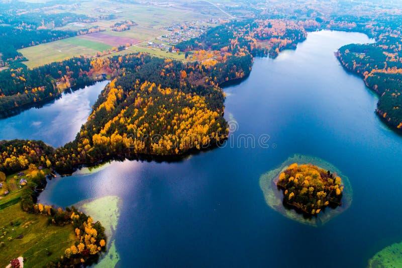 Truteń powietrzna fotografia jezioro obraz royalty free