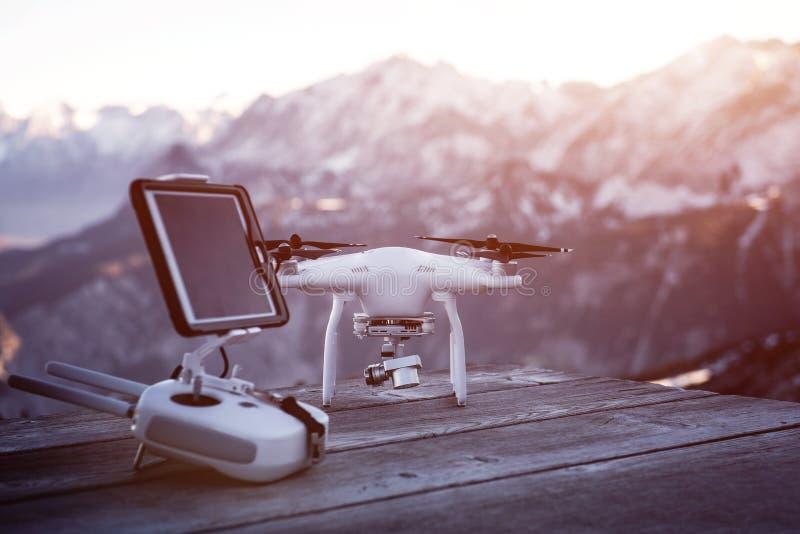 Truteń przygotowywający lot przed wysokimi górami Zmierzch nad wierzchołkiem góry fotografia stock