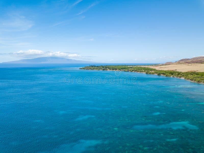 Trutnia boczny widok suchy kryształ i góry - jasne wody Lahaina Suną na wyspie Maui, Hawaje fotografia royalty free