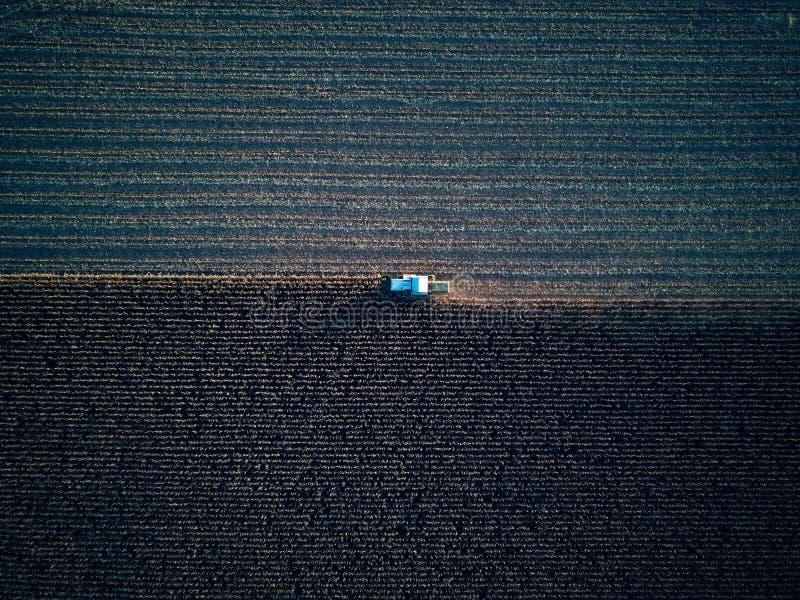Trutnia lota ptasiego oka powietrzny widok ciągnikowa kośby trawa na pięknym zieleni polu i niebieskiego nieba tła rolniku zdjęcie stock