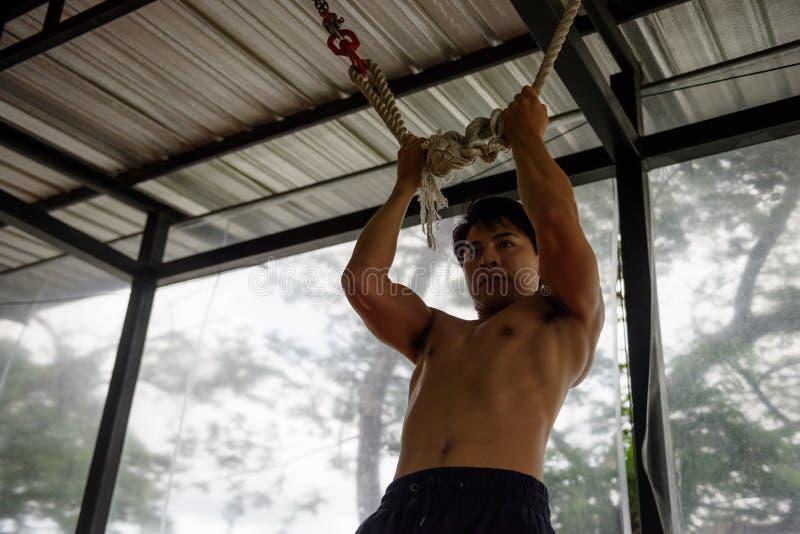 Trx musculeux asiatique de formation d'homme image libre de droits