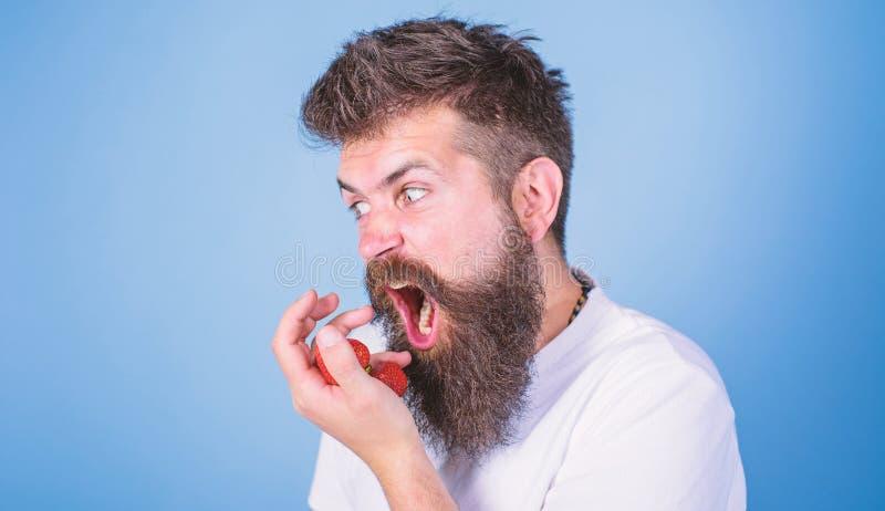 Tryck inte p? mitt b?r Den upps?kte hipsteren rymmer jordgubbar g?mma i handflatan p? Man girigt hungrigt g? inte att dela jordgu arkivfoton