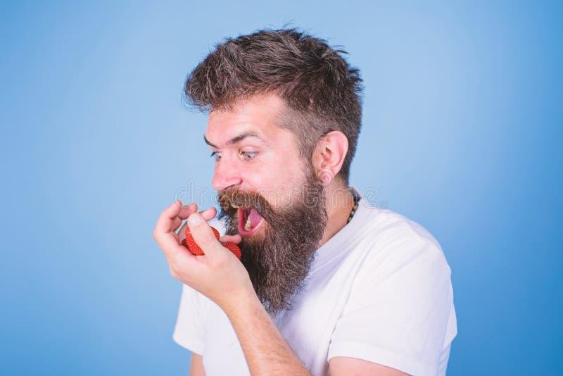 Tryck inte p? mitt b?r Den upps?kte hipsteren rymmer jordgubbar g?mma i handflatan p? Mannen som ropar den hungriga giriga framsi royaltyfri foto