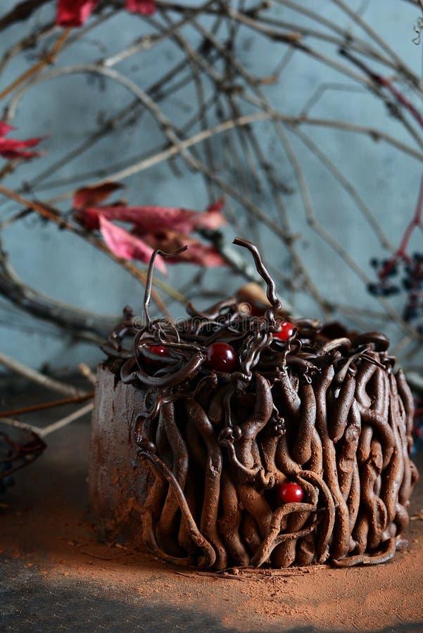 Tryffelchokladkaka läcker efterrätt Svart skog för kaka royaltyfri foto