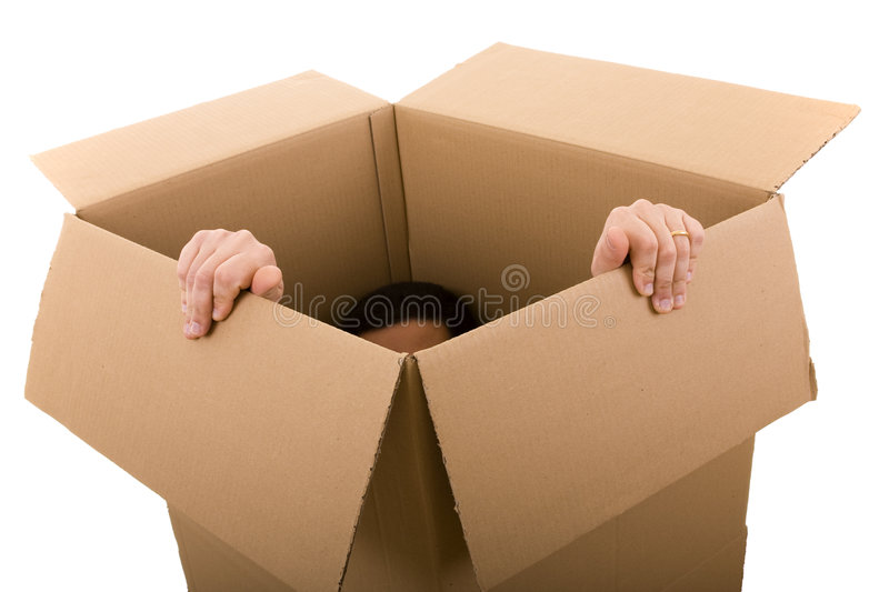 Download Trying to escape stock image. Image of carton, container - 7903781
