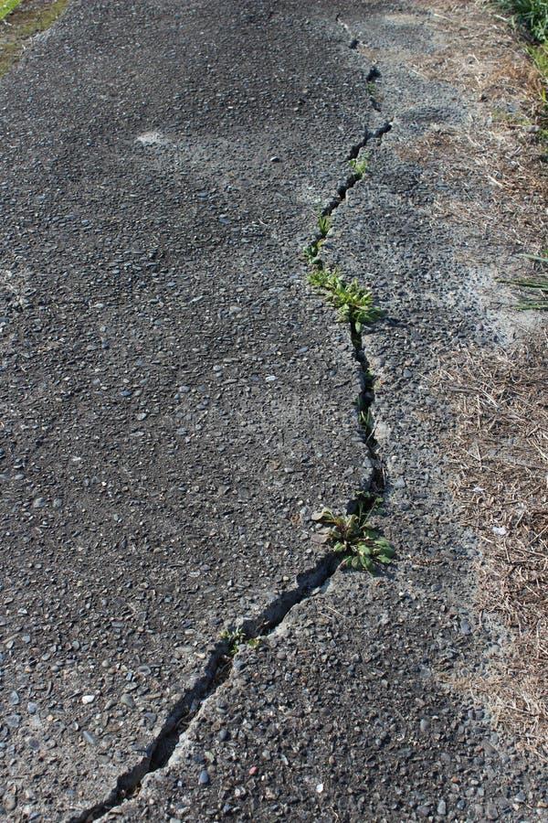 Trzęsienie ziemi uszkadzająca droga zdjęcia royalty free