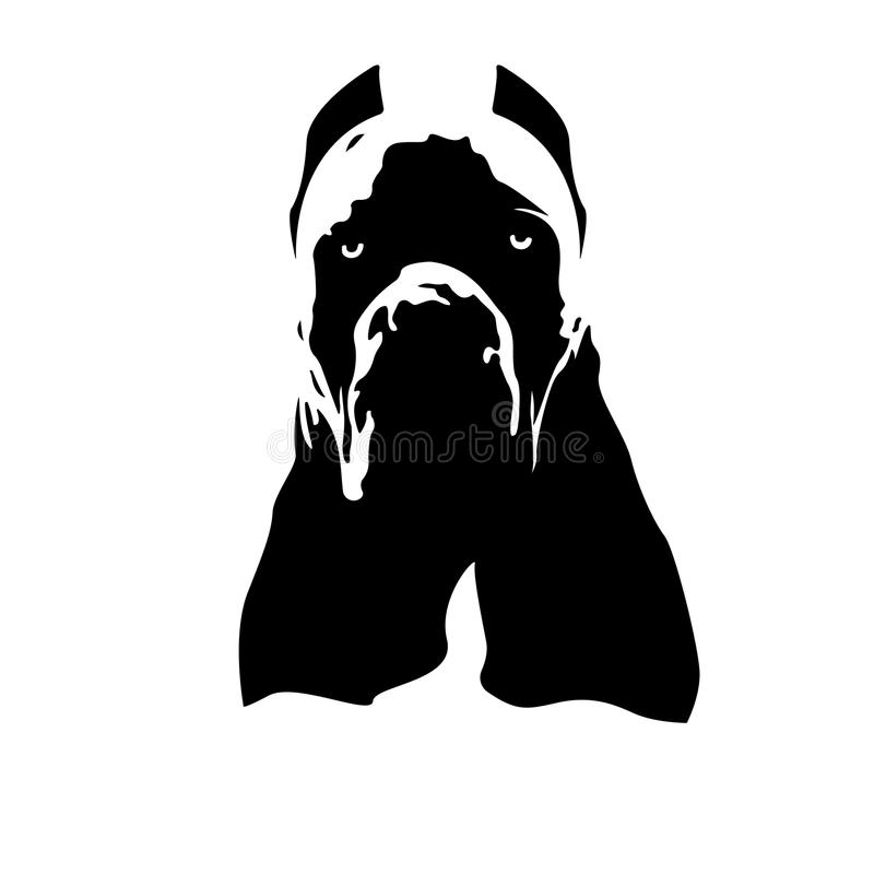 Trzciny Corso Italiano psa logo obraz stock