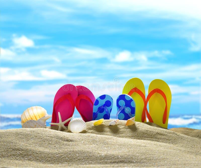 Trzepnięcie klapy na piaskowatej plaży zdjęcia stock
