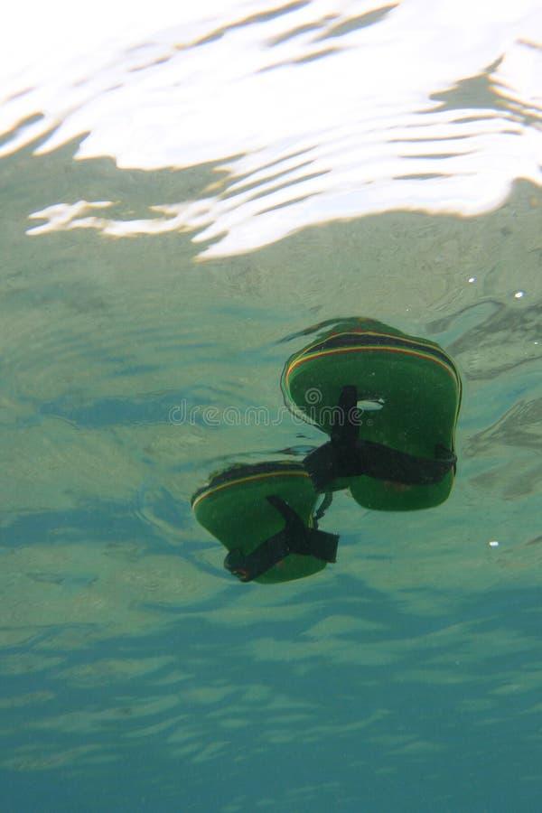 Trzepnięcie klapy unosi się na morze powierzchni obrazy stock