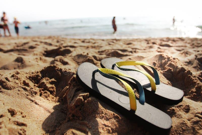 trzepnięcie plażowe klapy zdjęcia royalty free
