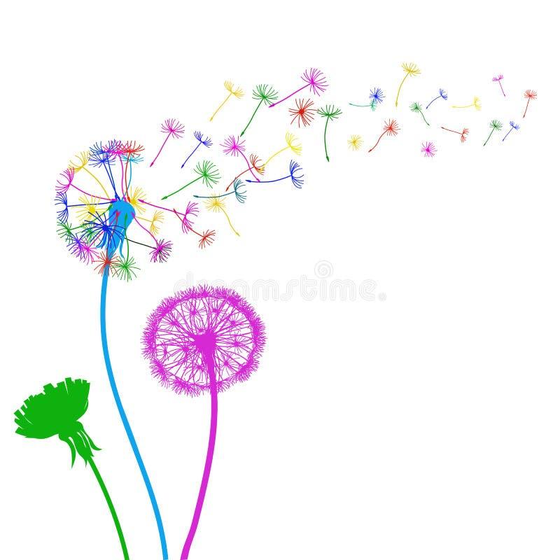 Trzy abstrakcjonistyczny kolorowy dandelion, lata ziarna dandelion - wektor ilustracja wektor