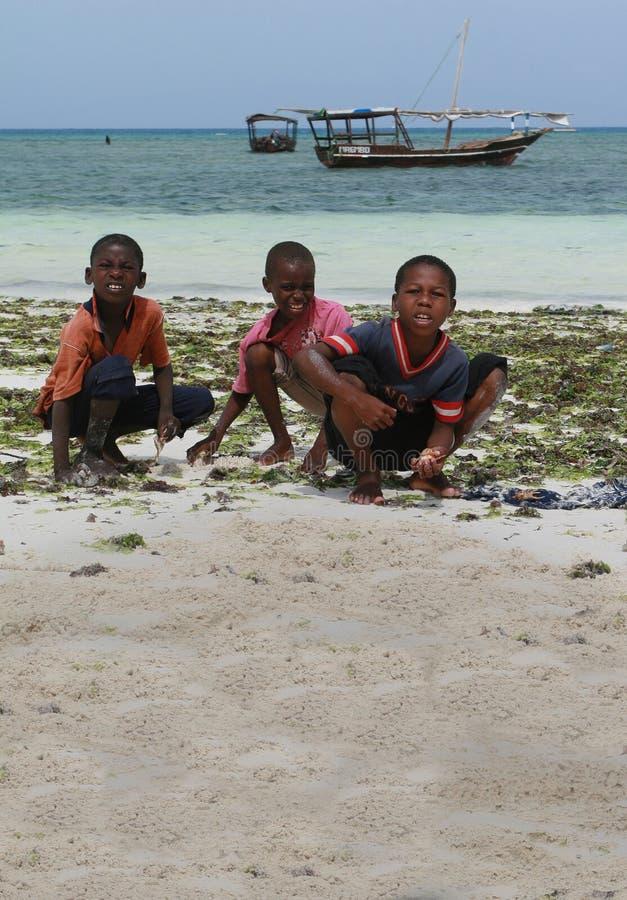 Trzy Afrykańskiej chłopiec zbierali dennych zwierzęta w kipieli strefie zdjęcia stock