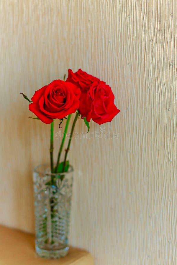 Trzy czerwonych róż stojak w wazie na beżowym tle ostro?? na pobliskim wzrasta? Zako?czenie kosmos kopii obrazy royalty free
