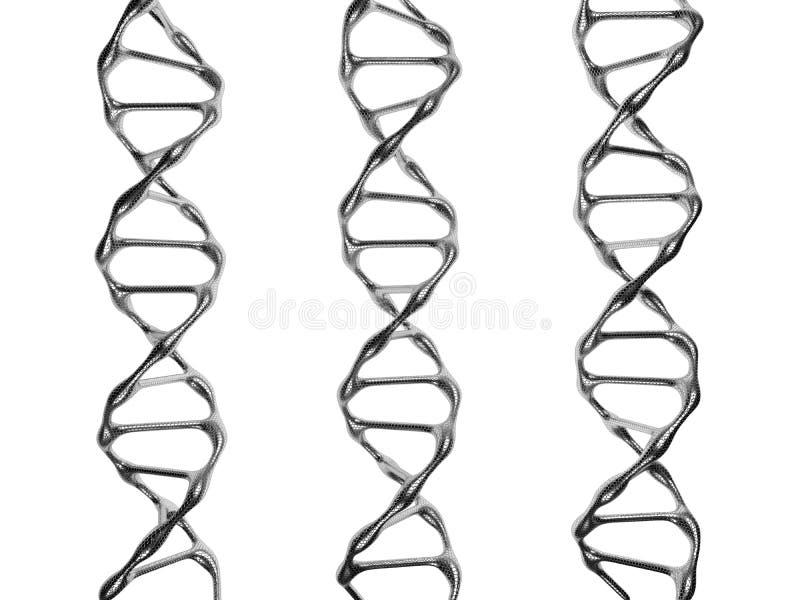 Trzy DNA spirali na białym tle ilustracji