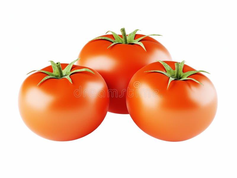 Trzy dojrzały i świezi pomidory odizolowywający na białym tle obrazy stock