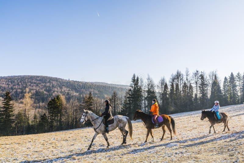 Trzy dziewczyny iść horseback jazda fotografia royalty free