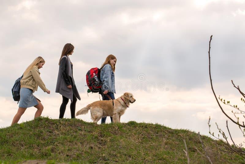 Trzy dziewczyny z psią podróżą zdjęcie royalty free