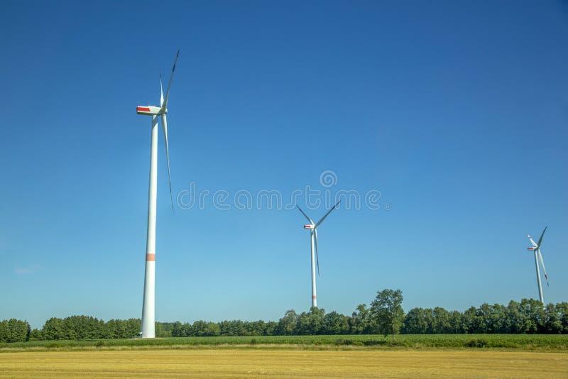 Trzy farmy wiatrowej w polu zdjęcia royalty free