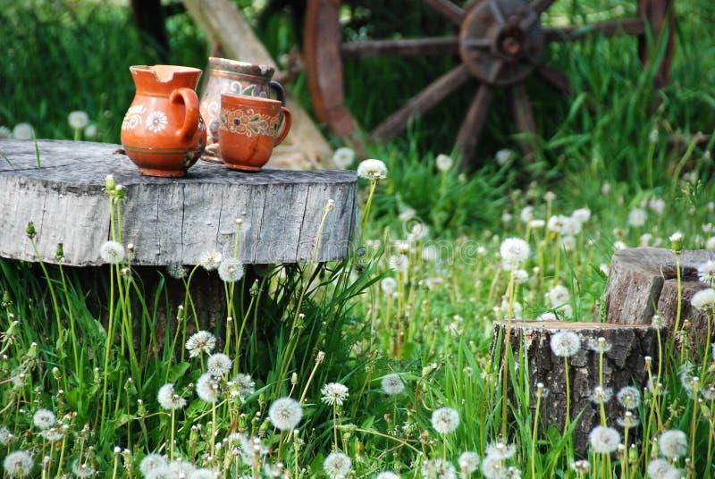 Trzy glinianego garnka wśród dandelions zdjęcia stock