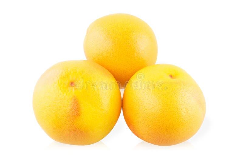 Trzy Grapefruitowy zdjęcie stock