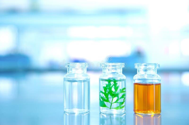 Trzy jasna buteleczka z zielonym liściem w lab nauki tle obrazy stock