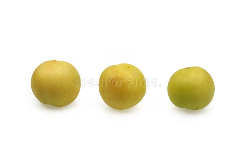 Trzy kawałka Żółta śliwka obrazy royalty free