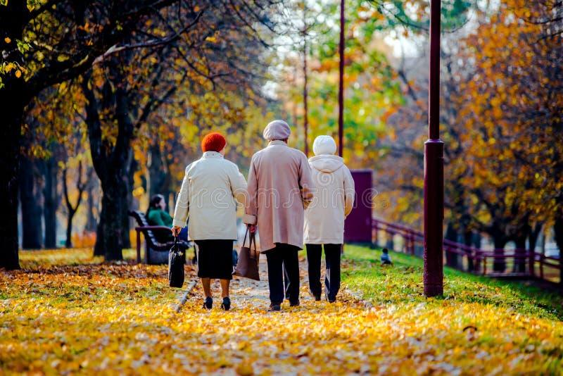 Trzy kobiet starszy chodzić obraz royalty free