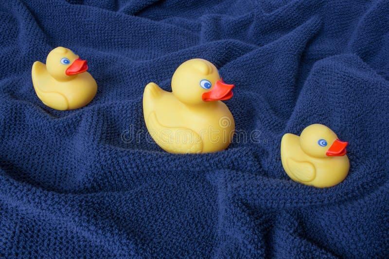 Trzy kolor żółty gumy kaczki na błękitnym falistym ręczniku obrazy stock