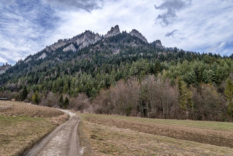 Trzy Korony Peak in Poland stock image