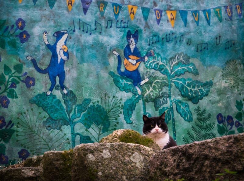 Trzy kota miasto Porto fotografia stock