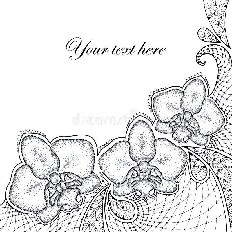 Trzy kropkowali ćma orchidei lub Phalaenopsis z dekoracyjną koronką w czerni na białym tle ilustracja wektor