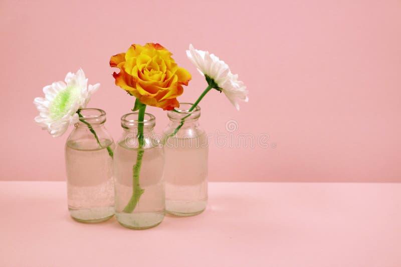 Trzy kwiatu w szklanej butelce na różowym tle obrazy royalty free