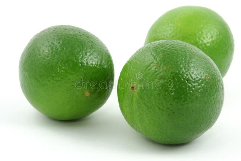 trzy limonki obrazy royalty free