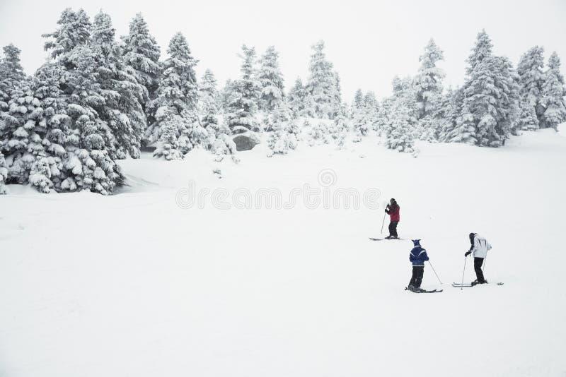 Trzy ludzie narciarstwa na górze obrazy royalty free