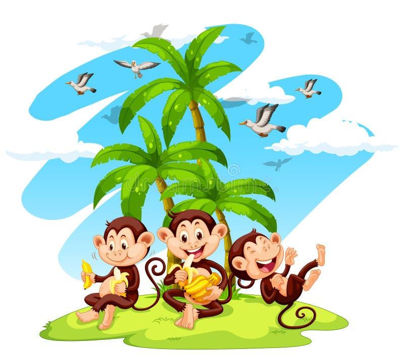 Trzy małpy je banany ilustracji