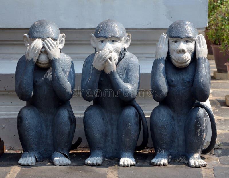 Trzy małpy, rzeźba obraz royalty free