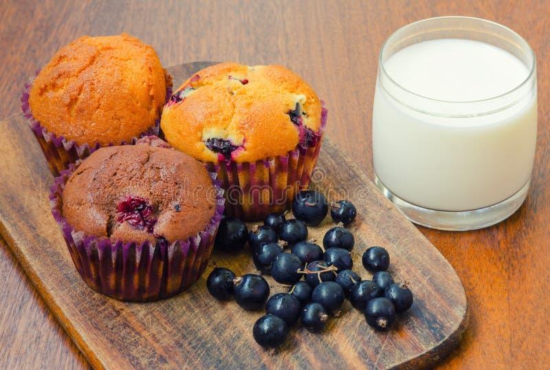 Trzy muffins z blackcurrant i szkłem mleko zdjęcie royalty free