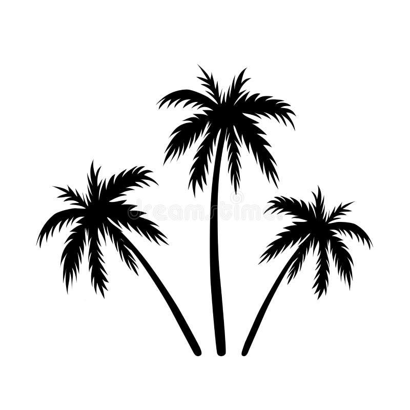 Trzy palm nakreślenie royalty ilustracja