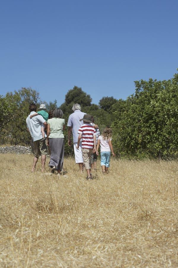 Trzy pokoleń Rodzinny odprowadzenie W polu obrazy stock