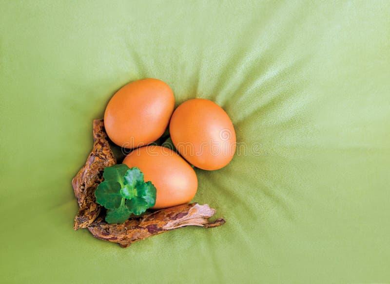 Trzy pomarańczowego Wielkanocnego jajka i roślina na aksamicie gałęziastej i zielonej, oliwka, zielony brezentowy tło, odgórny wi obrazy royalty free