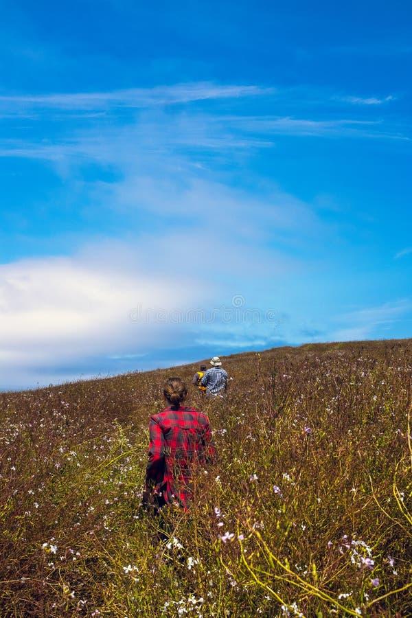 Trzy przyjaciela chodzi przez a łąka wildflowers na Tomales punktu śladzie zdjęcia royalty free