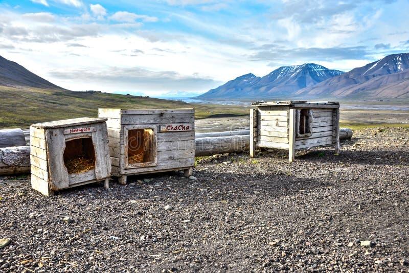 Download Trzy Psiego Domu W Spitsbergen, Svalbard Obraz Stock - Obraz złożonej z ekstremum, aridity: 53785691
