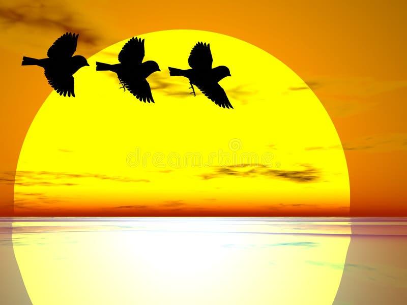 trzy ptaki