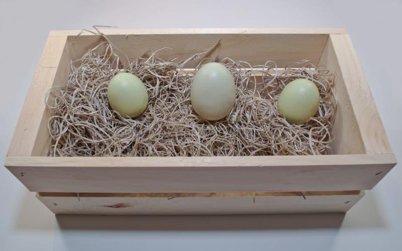 Trzy różnego barwionego Wielkanocnego jajka w drewnianym pudełku obraz royalty free