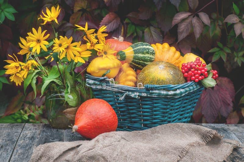 Trzy różnej pięknej dojrzałej bani kłamają na windowsill w domu w tle jesień ogród Zakończenie kopia zdjęcie stock